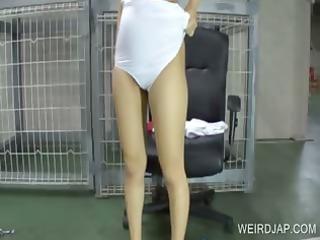 oriental bondman playing doggie shows gazoo