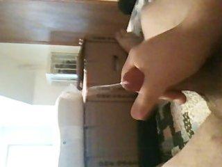 miniature jock cummin